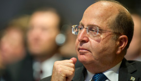 MSC_2014_Yaalon_Mueller_MSC2014_01